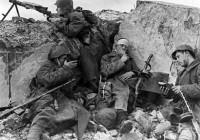 Останки смоленских солдат нашли под Ржевом