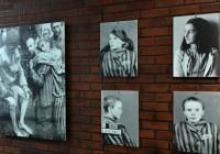 Выставка, прошедшая в Смоленске, подверглась цензуре ООН
