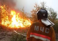 Смолянам вновь грозят лесные пожары