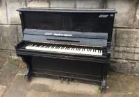 В смоленском парке появилось фортепиано
