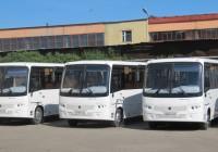 В Смоленске на маршруты выйдут автобусы для инвалидов