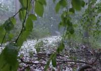 На востоке Смоленской области бушует ураган