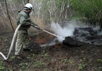 В Смоленском районе загорелся лес