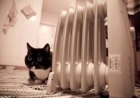 Смоляне смогут получить тепло раньше привычного срока