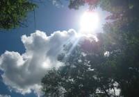 На выходных смолянам улыбнется солнце
