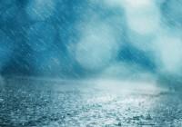 8 сентября. Утро в Смоленске: сезон дождей продолжается