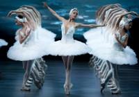 В Смоленск приедет легендарный балет «Лебединое озеро»