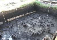 В Смоленской области обнаружены останки людей эпохи неолита