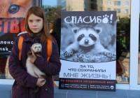 В Смоленске состоялся пикет в защиту диких зверей