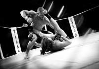 Смоленск примет международный турнир по смешанным единоборствам