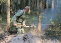 В Смоленской области сохраняется опасность пожаров