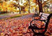 Смоленск ждут типичные осенние выходные