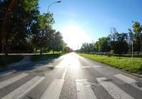Сегодня в Смоленске стартует акция «Пешеходный переход»