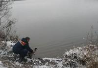Смоленские водолазы спасли утку