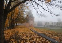 11 ноября. Утро в Смоленске: текстовая он-лайн трансляция