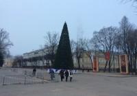 Новогоднюю ель установили на главной площади Смоленска