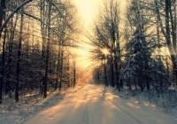 Выходные в Смоленске обещают быть морозными