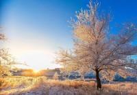 Смолян ждут по-настоящему зимние солнечные и морозные выходные