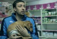 В Смоленске прооперировали собаку, выброшенную с 5 этажа собственной хозяйкой