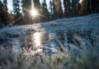 В Смоленск вернутся кратковременные заморозки
