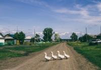 Смоленская область получит деньги на строительство сельских дорог