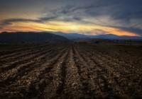 Как бесплатно получить землю под Смоленском