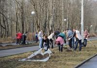 22 апреля смоляне выйдут на уборку Реадовского парка