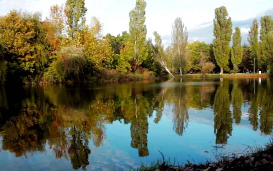 В природном парке «Гагаринский» откроется экологическая тропа