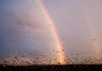 Синоптики обещают дожди в Смоленске
