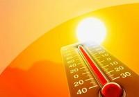 В Смоленске по-прежнему аномально жарко