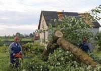Мощный ураган прошелся по деревне Заозерье в Руднянском районе