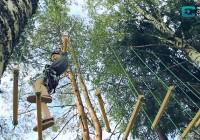 Веревочный парк в Смоленском Поозерье стал одним из самых посещаемых мест для туристов