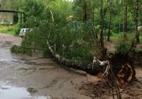 Последствия грозового шторма в Смоленской области (ФОТО)