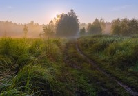 Сегодня в Смоленске будет солнечно и жарко