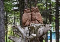 Сказочные герои из дерева поселятся в Смоленске