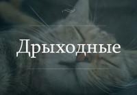 Идеи для уикенда в Смоленске и области. 1-2 октября