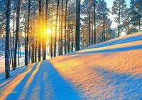 В Смоленской области может похолодать до -9 градусов