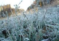 В Смоленской области усилится похолодание