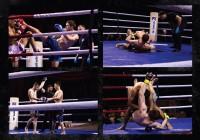 В Смоленске пройдет профессиональный бойцовский турнир
