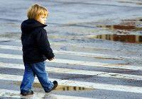 Прокуратура требует обезопасить пешеходные переходы возле смоленских школ