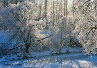 Смоленское Поозерье ждет гостей на новогодних каникулах