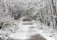 В понедельник в Смоленск придет мокрый снег
