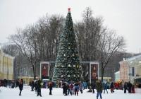 Главную елку Смоленска откроют 22 декабря