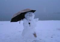 Теплая погода в Смоленске нарушает все температурные нормы