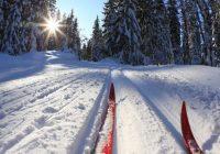Спортивные мероприятия в Смоленске на Новогодние праздники