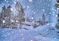 Первый день декабря в Смоленске будет теплым и снежным