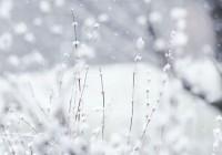 В Смоленской области пойдут снегопады