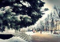 В понедельник в Смоленске похолодает