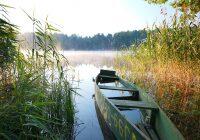 В Смоленске откроется выставка, посвященная природе Поозерья