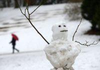 В выходные в Смоленскую область придут оттепели и снегопады